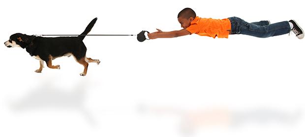 Stop-leash-pulling